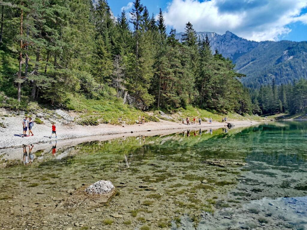 Grüner See wandern - sehr idyllisch am glasklaren Wasser mit dem imposanten Hochschwabgebirge